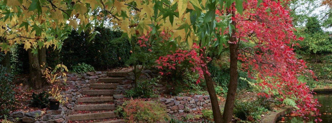Trappen en verharding van duurzaam natuursteen