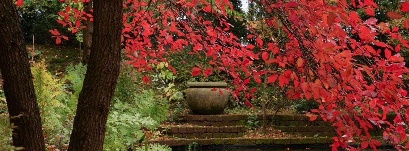Sfeervolle vazen en ornamenten versterken de sfeer