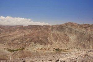 Voor Huara, de kleine oase Tarapaca diep in een dal - Wiecher Huisman