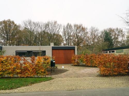 Wiecher Huisman; tuin Assen; voor renovatie (3)