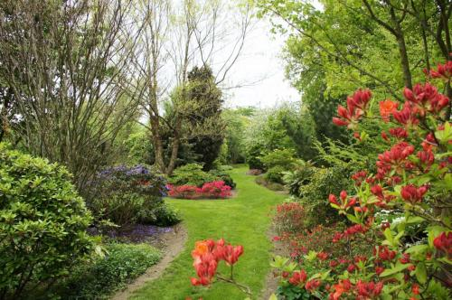 Arboretum Westeresch ©Wiecher Huisman (1)
