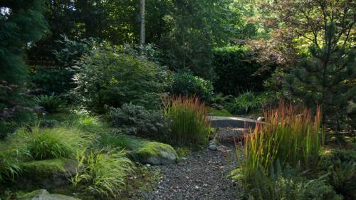 Rolde Japanse tuin 2012 2